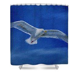 Free Spirit 2 Shower Curtain