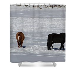 Shower Curtain featuring the photograph Free Spirits by Fiona Kennard