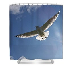 Freedom Flight Shower Curtain