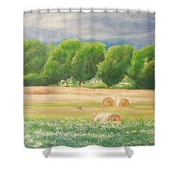 Shower Curtain featuring the painting Freedom by Jane  See