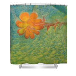 Shower Curtain featuring the painting Freedom by Mike Breau