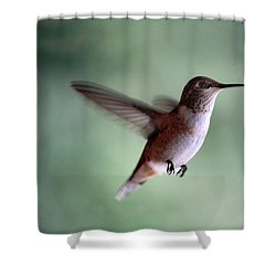 Freedom - Pillow Format Shower Curtain