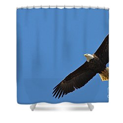 Freedom Shower Curtain by Rick  Monyahan
