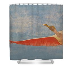 Freedom Shower Curtain by Tim Townsend