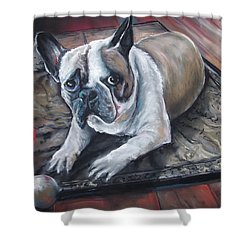 french Bull dog Shower Curtain