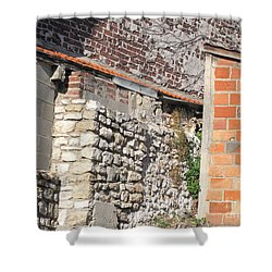 French Farm Wall Shower Curtain by HEVi FineArt
