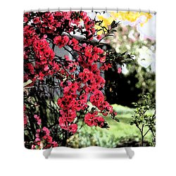 Quince Flowers Shower Curtain