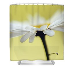 Fresh As A Daisy Shower Curtain by Lois Bryan