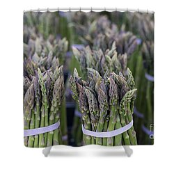 Fresh Asparagus Shower Curtain by Mike  Dawson