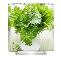 Fresh Herbs In A Glass Shower Curtain by Elena Elisseeva