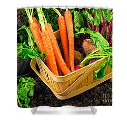 Fresh Picked Healthy Garden Vegetables Shower Curtain by Edward Fielding