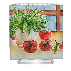Fresh Picked Tomatoes And Basil Shower Curtain by Elaine Duras