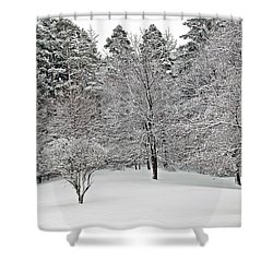 Fresh Snow Scene Shower Curtain by Aimee L Maher Photography and Art Visit ALMGallerydotcom
