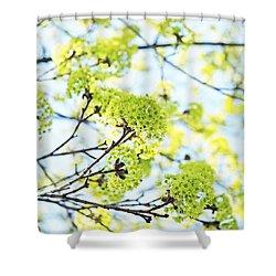 Fresh Spring Green Buds Shower Curtain