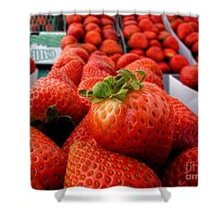 Fresh Strawberries Shower Curtain by Peggy Hughes