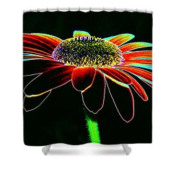 Friday Night Daisy Shower Curtain