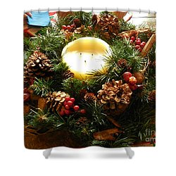 Friendly Holiday Reef Shower Curtain by Robin Coaker