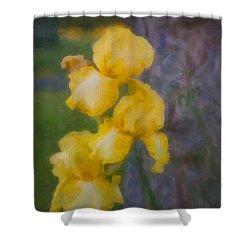Friendly Yellow Irises Shower Curtain by Omaste Witkowski