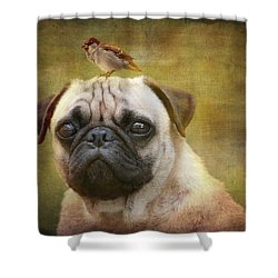 Friends Like Pug And Bird Shower Curtain by Barbara Orenya