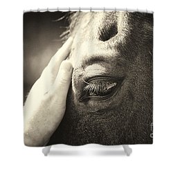 Friends Shower Curtain by Michelle Twohig
