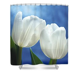 Friendship Shower Curtain by Lana Enderle