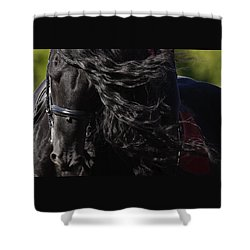 Friesian Beauty Shower Curtain by Wes and Dotty Weber