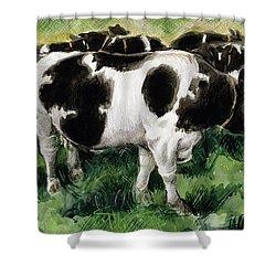 Friesian Cows Shower Curtain by Gareth Lloyd Ball