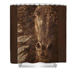 Friesian Spirit Shower Curtain by Melinda Hughes-Berland