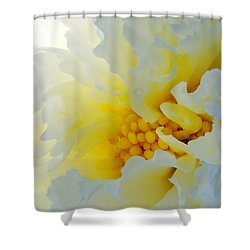 Frilling Shower Curtain by Wendy Wilton