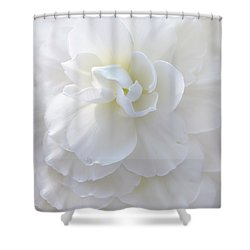 Frilly Ivory Begonia Flower Shower Curtain by Jennie Marie Schell