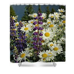 Shower Curtain featuring the photograph Frisco Flowers by Lynn Bauer