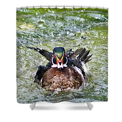 Frisky - Wood Duck Shower Curtain
