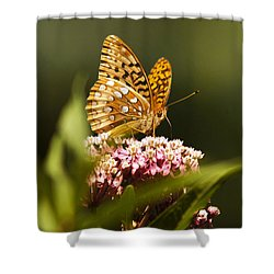 Fritillary Butterfly On Pink Milkweed Flower Shower Curtain by Christina Rollo