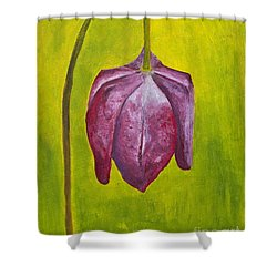 Fritillary Flower Shower Curtain
