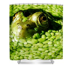 Frog Eye's Shower Curtain by Optical Playground By MP Ray