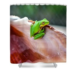 Shower Curtain featuring the photograph Frog In A Cockle by Rob Sellers