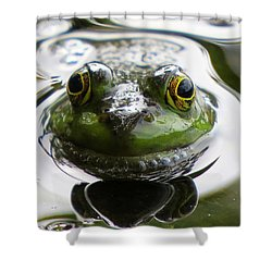 Shower Curtain featuring the photograph Frog Kiss by Dianne Cowen