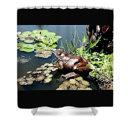 Frog On The Pond Shower Curtain