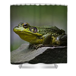 Frog Outcrop Shower Curtain by Christina Rollo