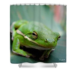 Froggy Smile Squared Shower Curtain by TK Goforth