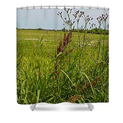 From A Soldier's Perspective Shower Curtain by Alys Caviness-Gober