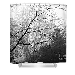 Shower Curtain featuring the photograph From Hence We Come by Robyn King
