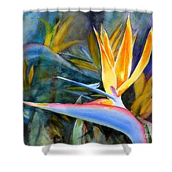 From Paradise Shower Curtain by Mohamed Hirji