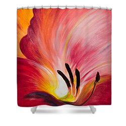 From The Heart Of A Flower Red I Shower Curtain
