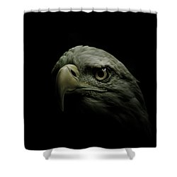 From The Shadows Shower Curtain