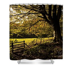 From Woods To Fields Shower Curtain by Anne Gilbert