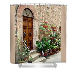Front Door Shower Curtain by Ellen Henneke