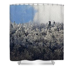Frost Line Shower Curtain