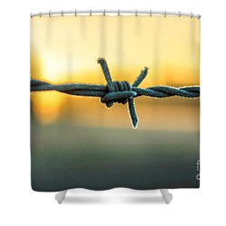 Frost On Barbed Wire At Sunrise Shower Curtain
