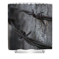 Shower Curtain featuring the photograph Frost On The Wire by Ann E Robson
